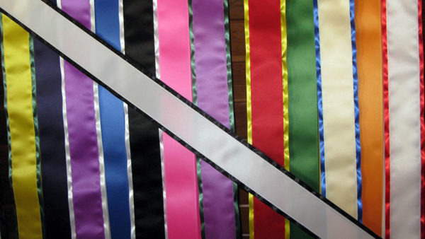 Blank Economy All Occasion Sash With Border