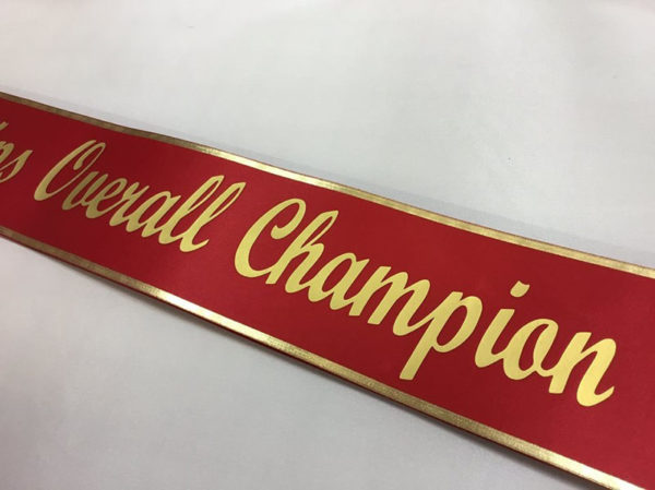 Silver and Gold Sashes2 600x449 - $19 Lettered Economy All Occasion Sash With Silver or Gold Edging