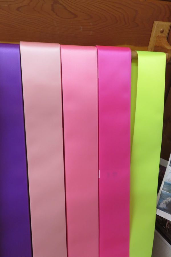 pinks 600x900 - $7 Blank Economy All Occasion Sash